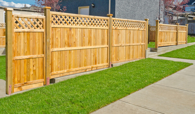 security-fence-guard-brown